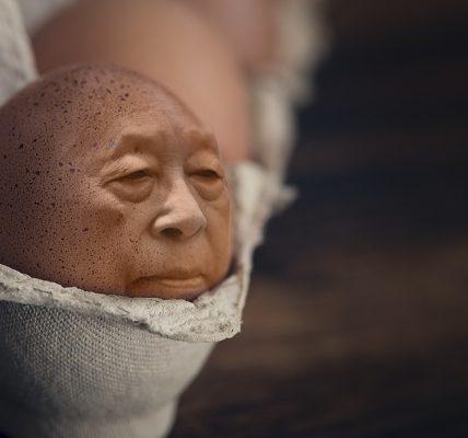 jak sprawdzić świeżość jajka