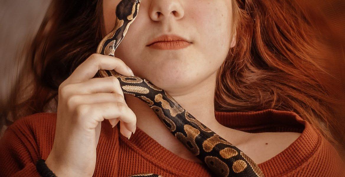 wąż we śnie