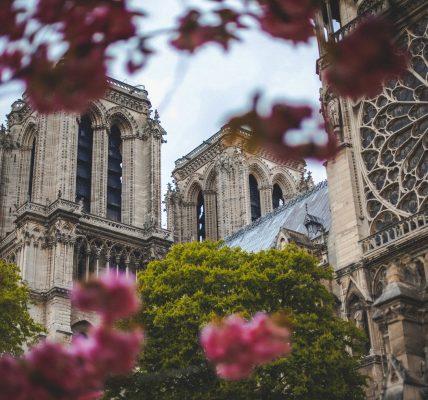 katedra Notre Dame – symbolika