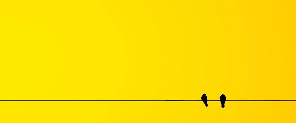 ptak wielkości wróbla