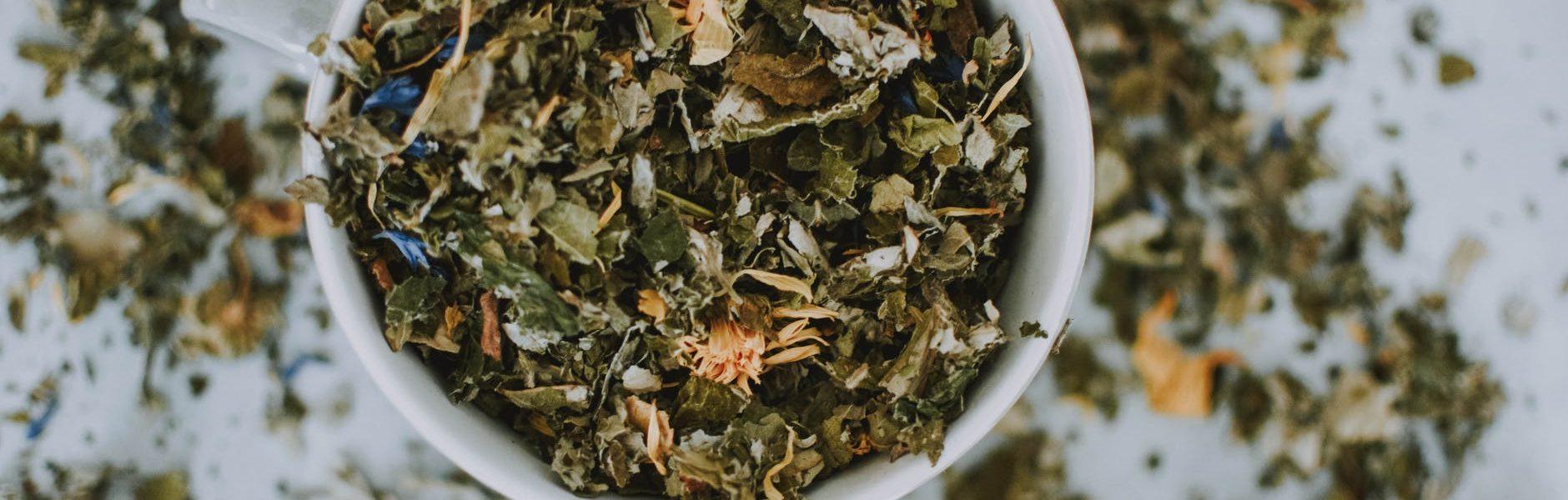 właściwości herbaty zielonej